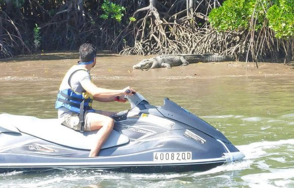 Cairns Croc Spotting Jet Ski Tour